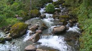 Livingwaters1